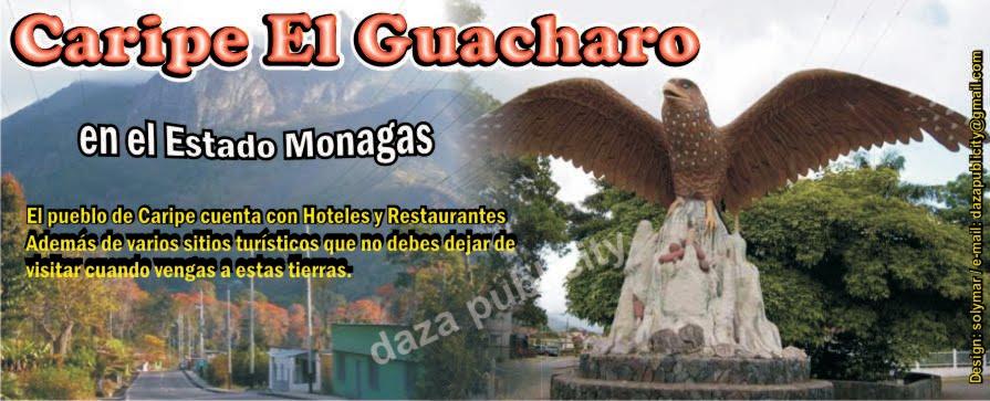 HOTELES Y SERVICIOS DE CARIPE EL GUACHARO