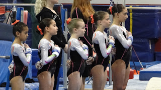 Traverse City Gymnastics State Meet