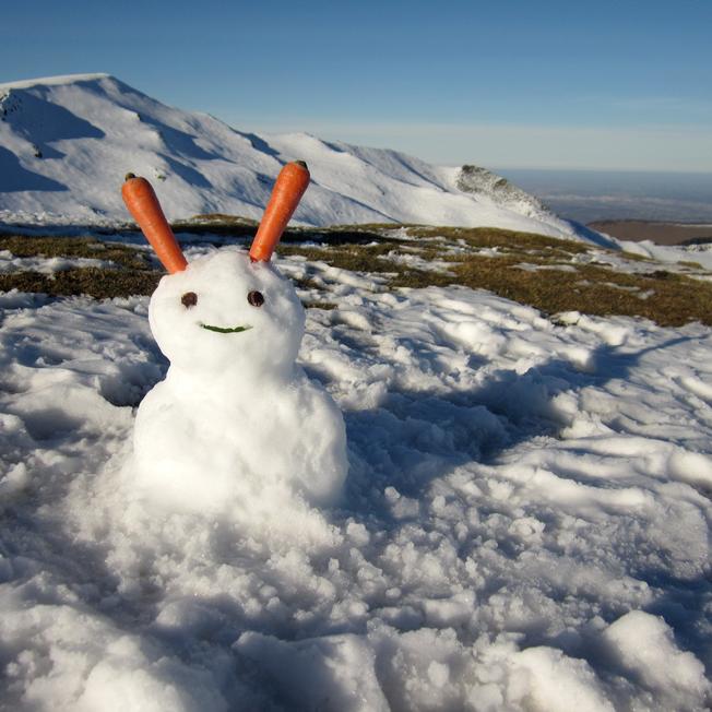bonhomme de neige lapin - http://spicerabbits.blogspot.fr/