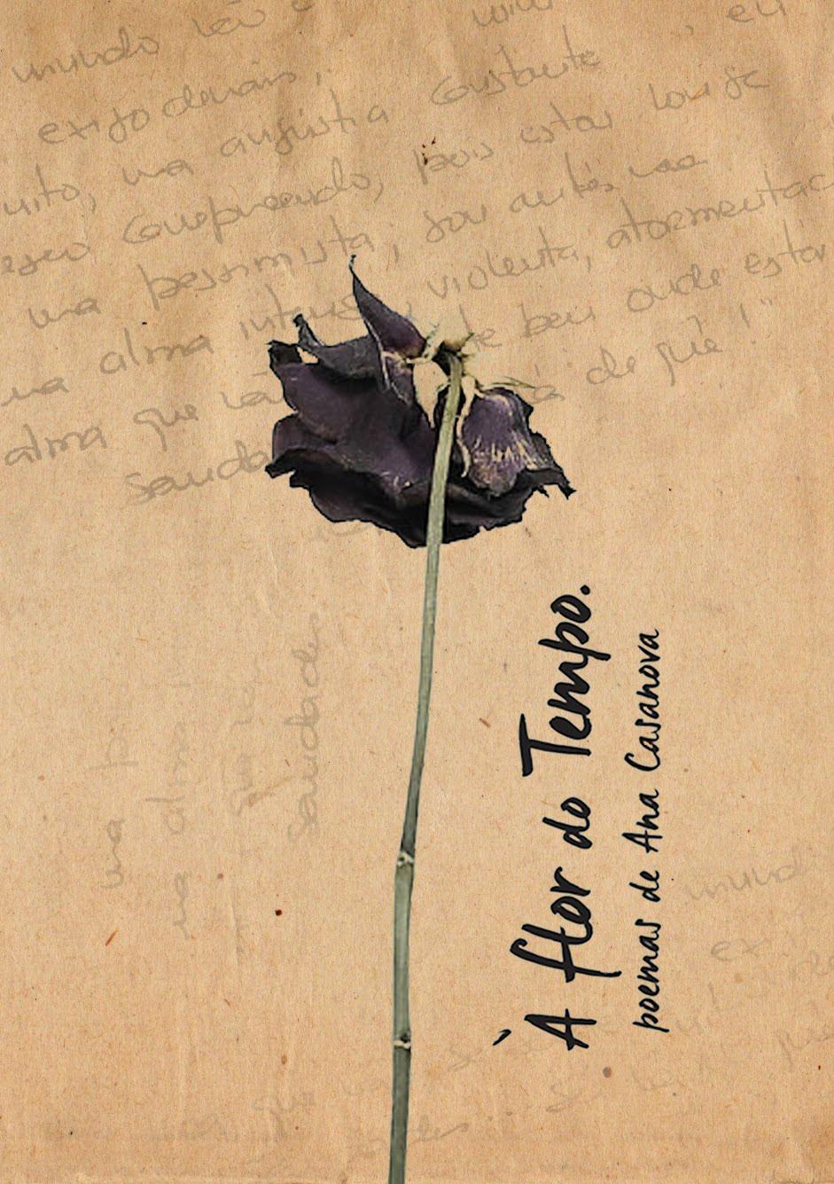 """""""À Flor do Tempo"""" - 7° Livro"""