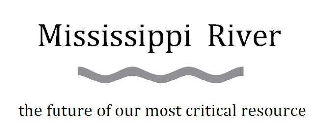 Mississippi River Clean-Up