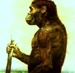Mengenal Lebih Jauh Megantropus (Manusia Raksasa)