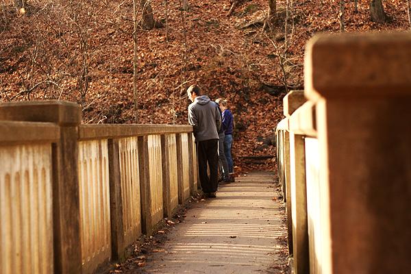 Matthiessen State park bridge