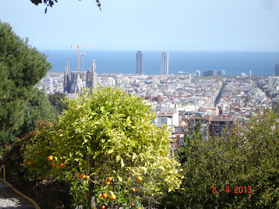 panorama superba din Parc Guell
