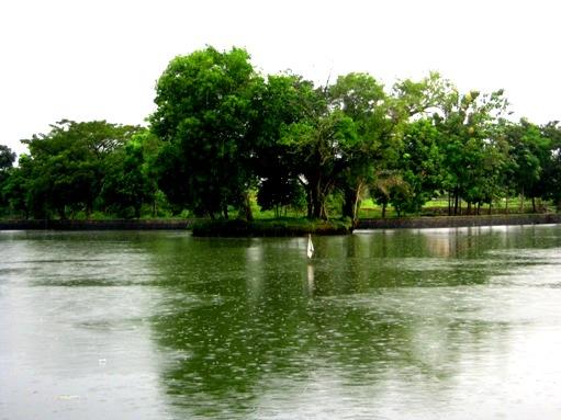 Gede Lake Bogor, Indonesia