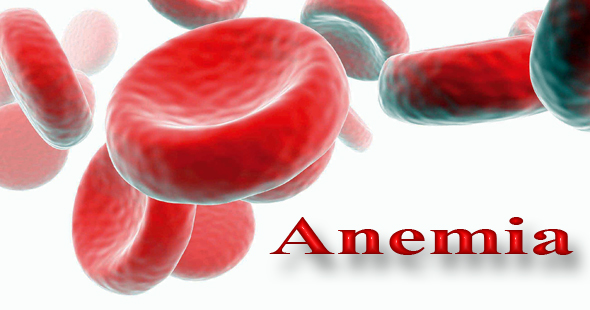 Gejala Awal Penderita Anemia Defisiensi Besi