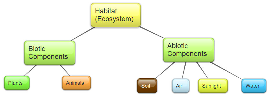 Abiotic examples for example to survive in