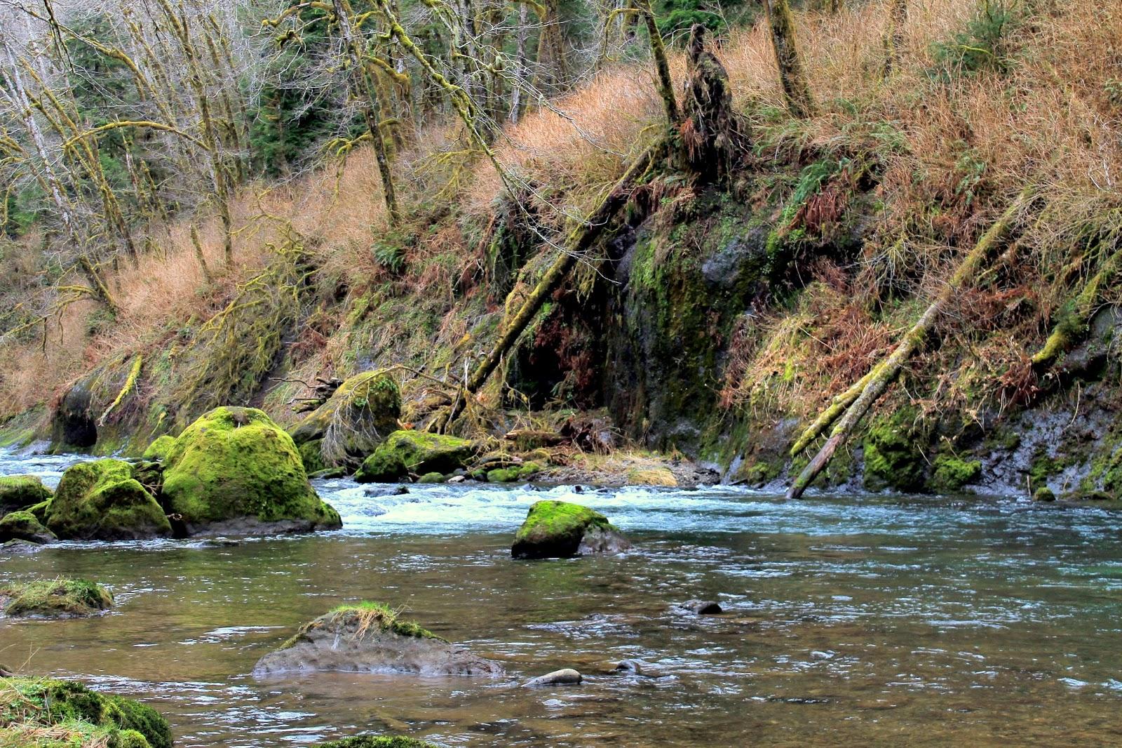 Secret Oregon River