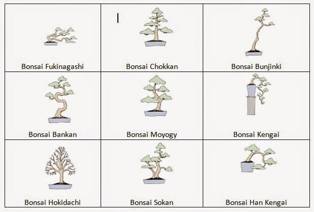 "<img src=""bentuk-dasar-bonsai.jpg"" alt=""bentuk dasar bonsai"">"