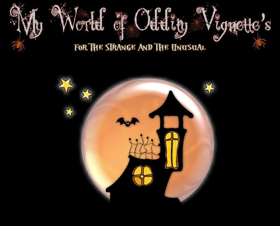 My World of Oddity Vignette's
