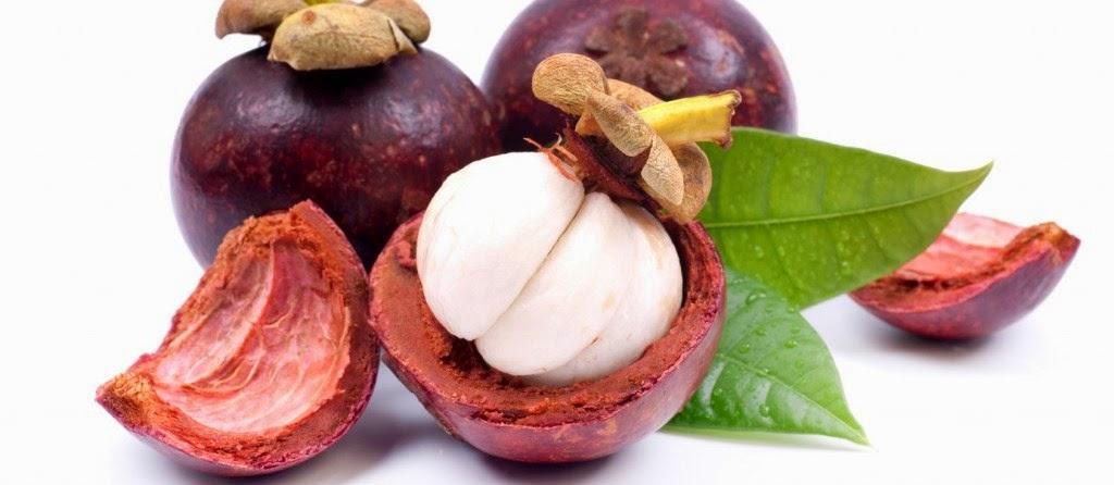 pengobatan alternatif diabetes melitus