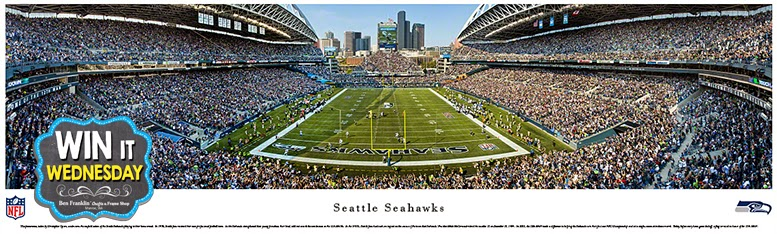 Seattle Seahawks Panorama Print