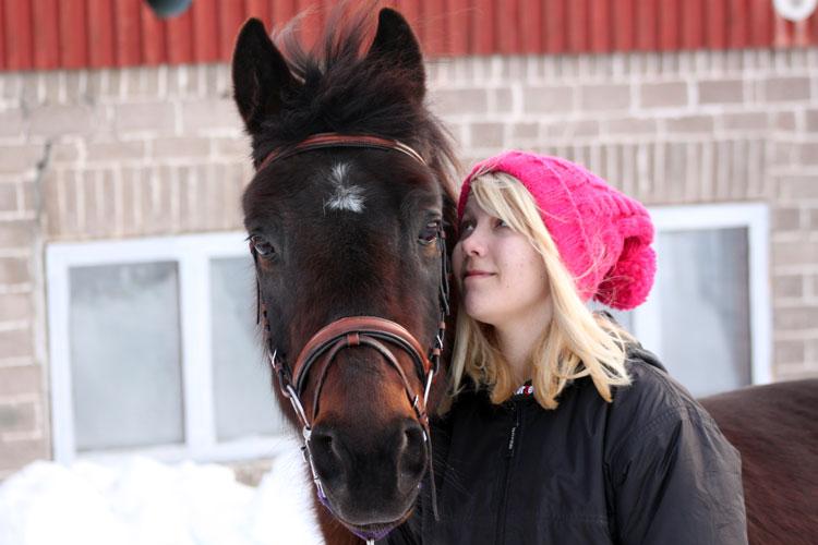 Annetaan hevonen ilmaiseksi