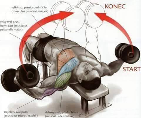 Bodybuilding weight training Exercises step by step instructions 3