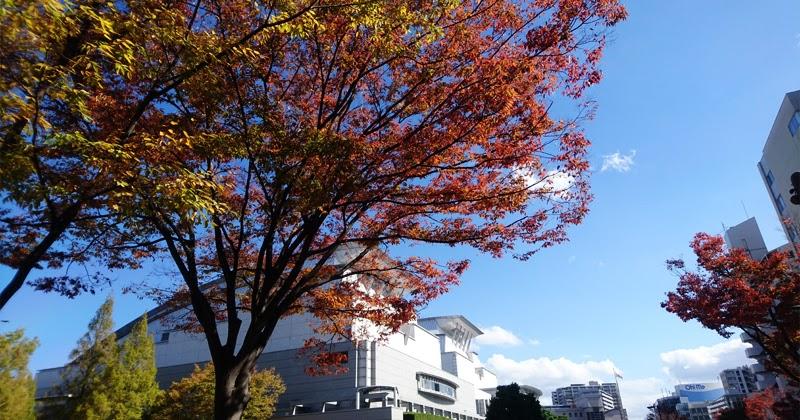 野村萬斎の画像 p1_21