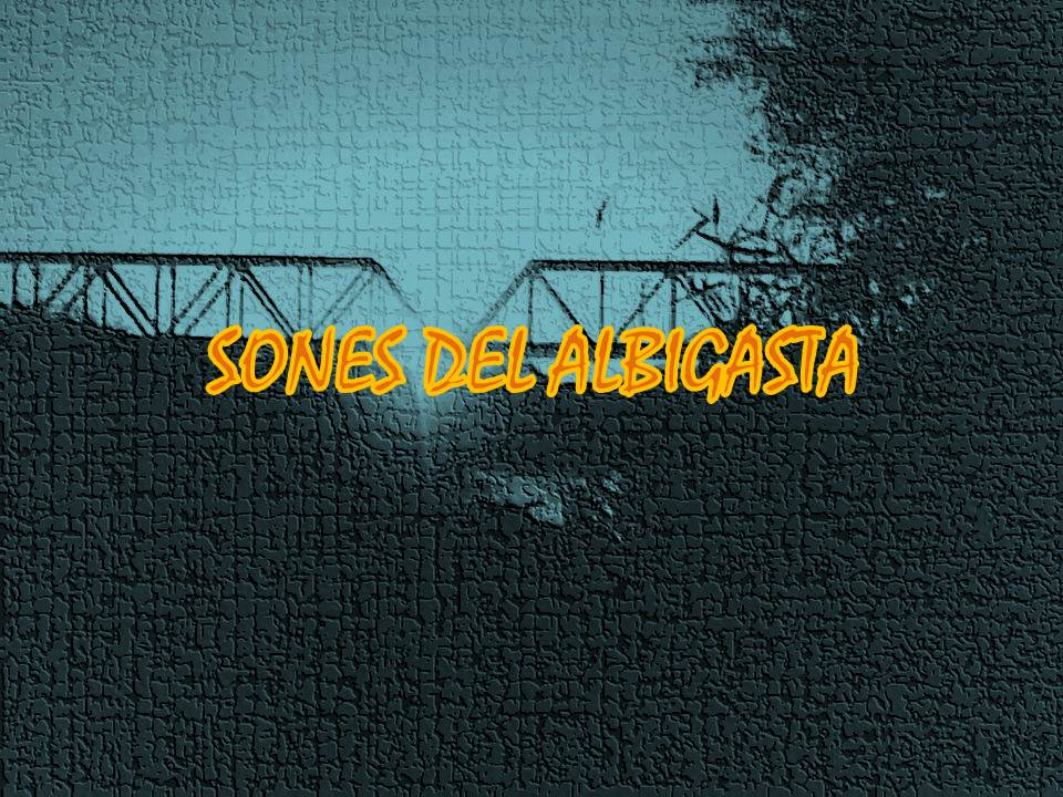 SONES DEL ALBIGASTA
