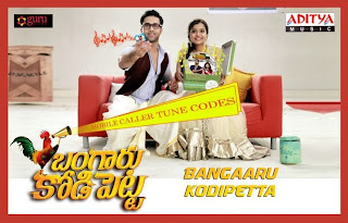 Bangaru Kodi Petta (BKP) (2014) Telugu Movie First Look Poster Release Date, Star Cast and Crew, Trailer
