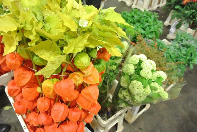 New Covent Garden Flower Market autumn