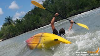 guadeloupe, kayak, kayak mangrove, mangrove