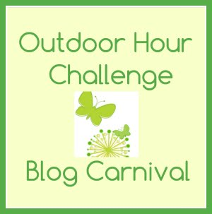 The OHC Blog Carnival is Back!