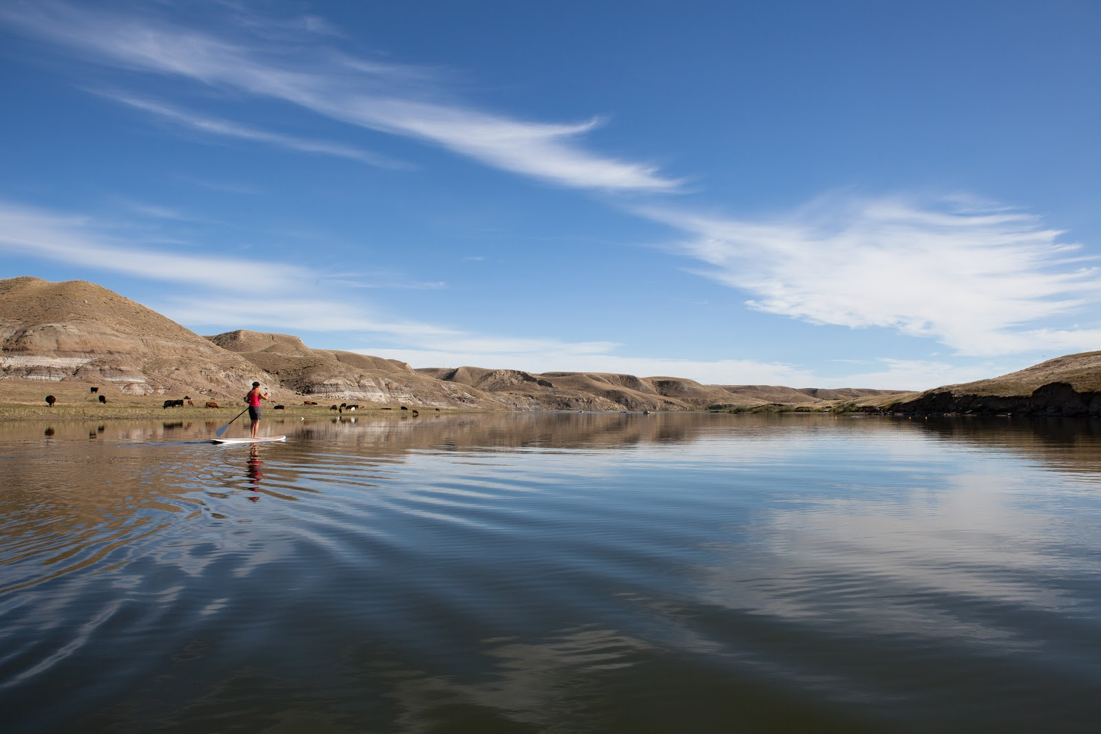Planning: The Best Provincial Park Campgrounds in Southern Alberta