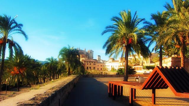 Пальма Мальорка ла Сеу испания балеарские острова Хайме España Palma Mallorca Baleares