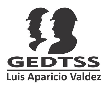 GEDTSS - Actividades