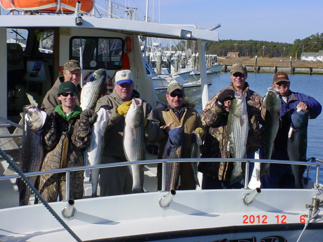 Fishing on maryland 39 s chesapeake bay with sawyer charters for Chesapeake fishing report