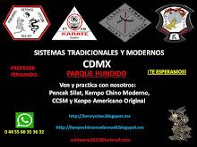 ARTES MARCIALES EXCLUSIVAS CDMX PARQUE HUNDIDO