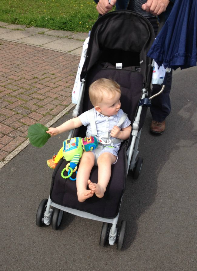 baby in buggy holding leaf with pram toy