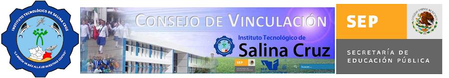 Consejo de Vinculación Instituto Tecnológico de Salina Cruz.