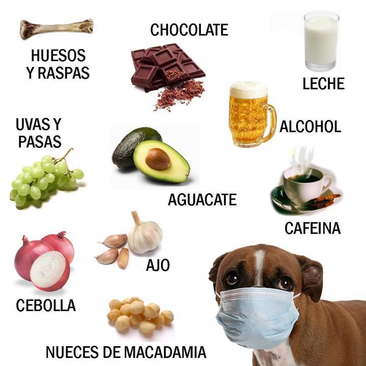 Compromiso ambiental junio 2013 - Anemia alimentos recomendados ...