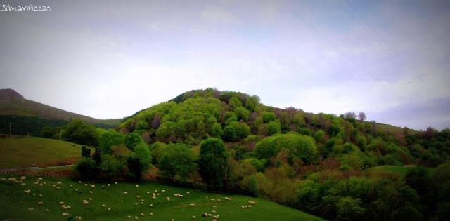 valle del Baztán - Navarra