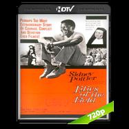 Los lirios del valle (1963) HDTV 720p Audio Ingles 2.0 Subtitulada