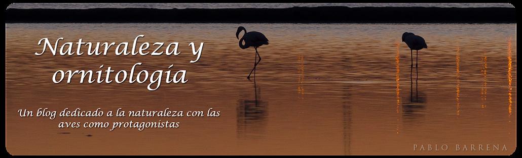 Naturaleza y ornitología