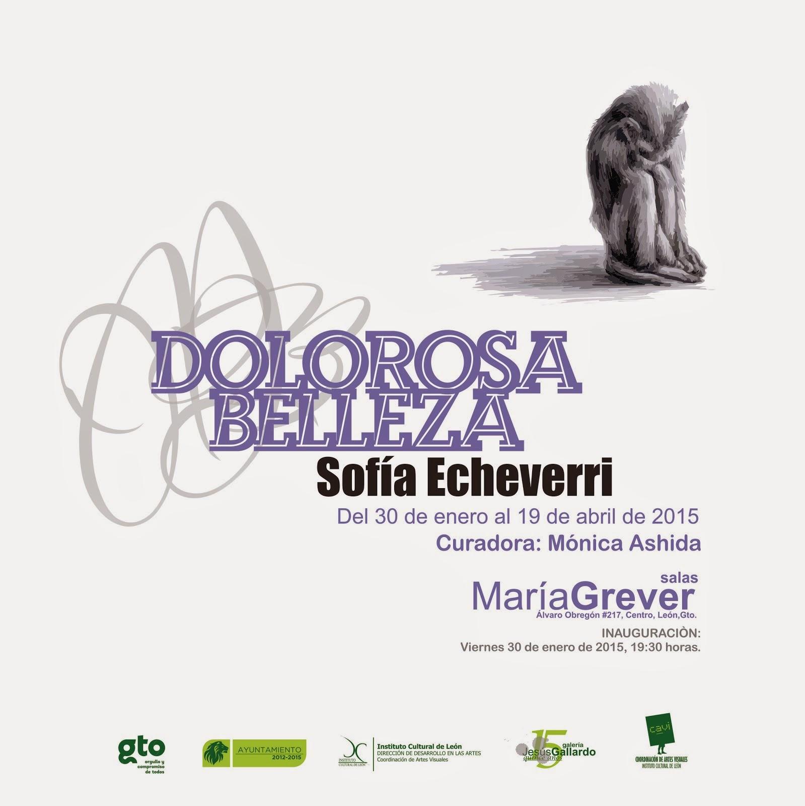 Dolorosa Belleza, Sofía Echeverri