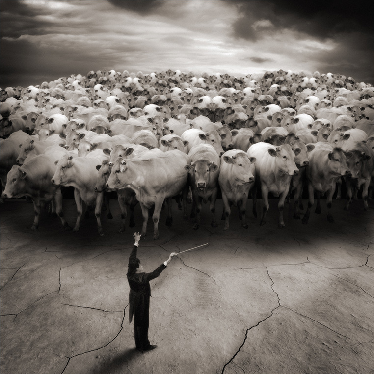 Emerging Photographers, Best Photo of the Day in Emphoka by Yves Lecoq, https://flic.kr/p/6dP2PN