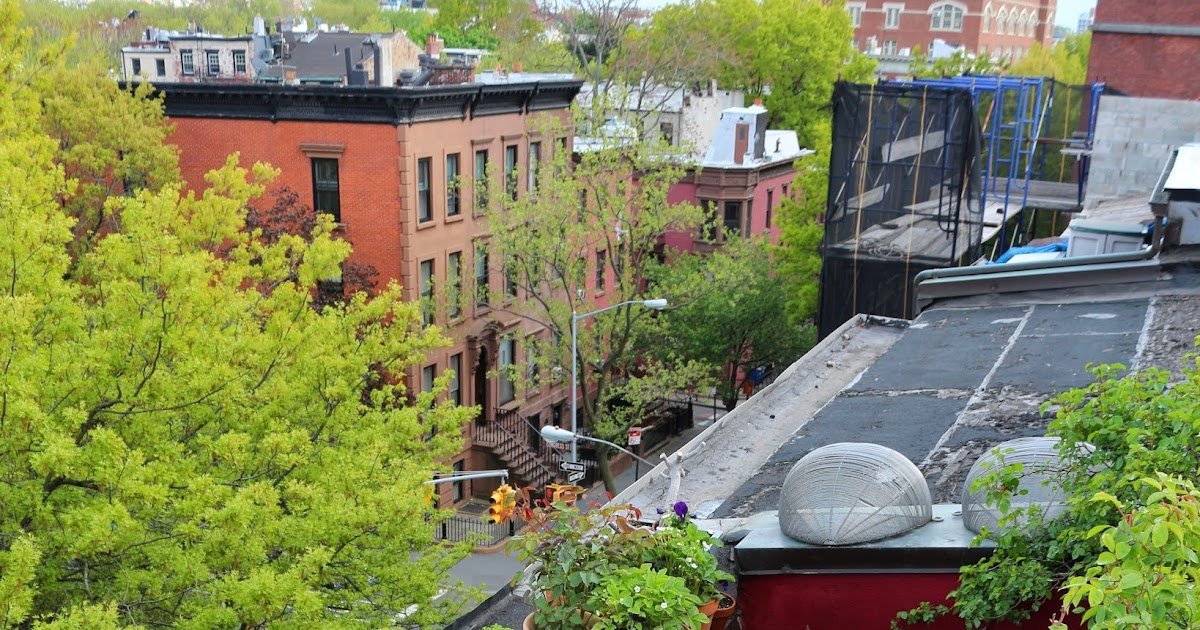 66 square feet plus the brooklyn terrace in may for 11 terrace place brooklyn