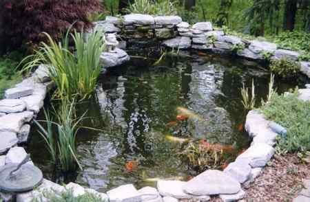 Dise o y mantenimiento de interiores y exteriores - Como decorar un estanque ...
