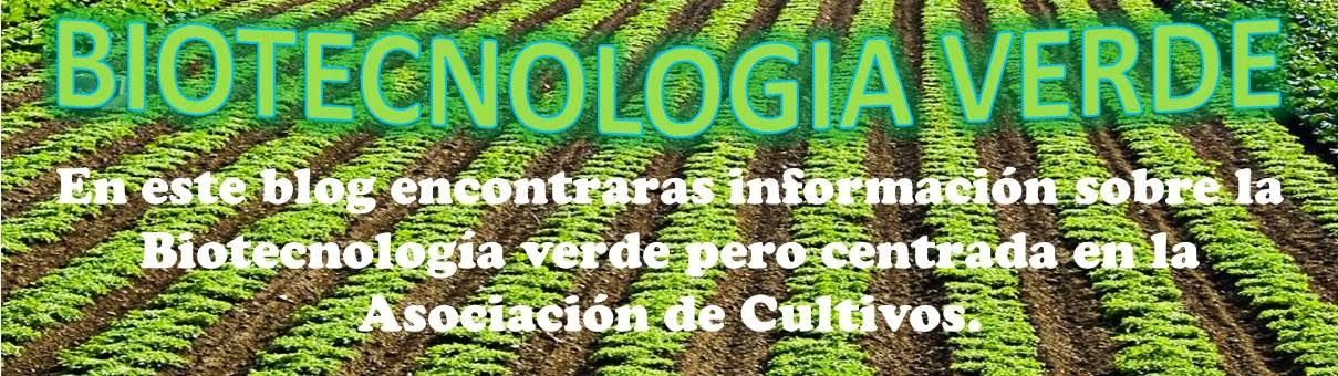Biotecnolog a verde ventajas y desventajas de la for Que es la asociacion de cultivos