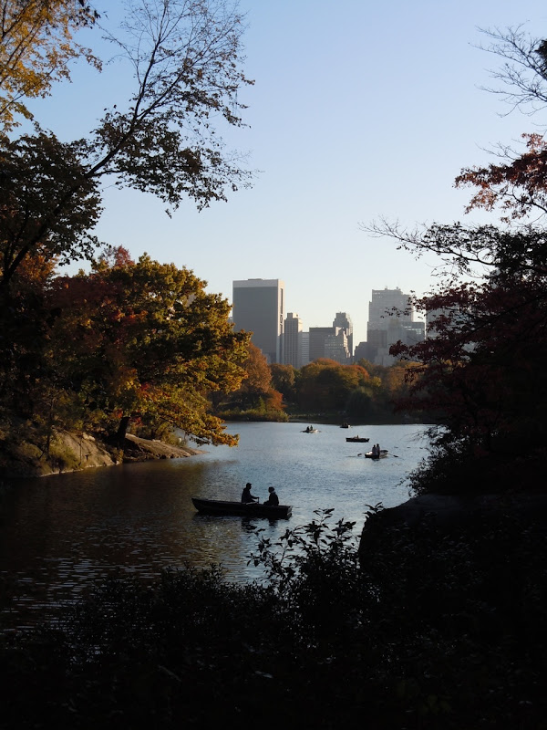 Autumnal Central Park view