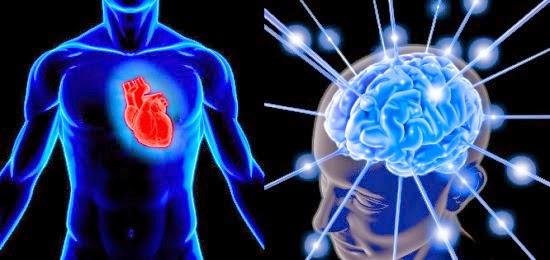 Joy-Ho\'oponopono: Introducción a la Coherencia Cardíaca, el misterio ...