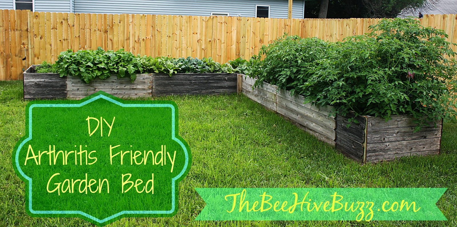 The bee hive buzz diy arthritis friendly raised garden bed for the walls of my garden box we used re purposed privacy fence panels the retirement home behind my parents house was putting up a new privacy fence and baanklon Gallery