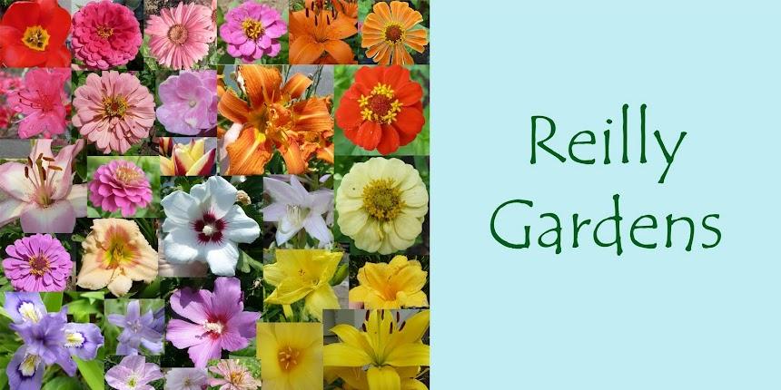 Reilly Gardens