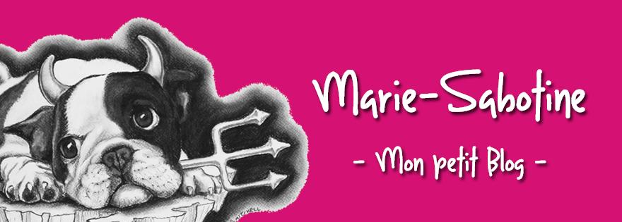 LE BLOG DE MARIE-SABOTINE