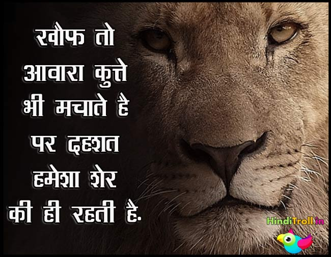 Khof To Awara Kutte Bhi | High Attitude Hindi Comment Picture | Top Fighter Hindi Quotes Wallpaper