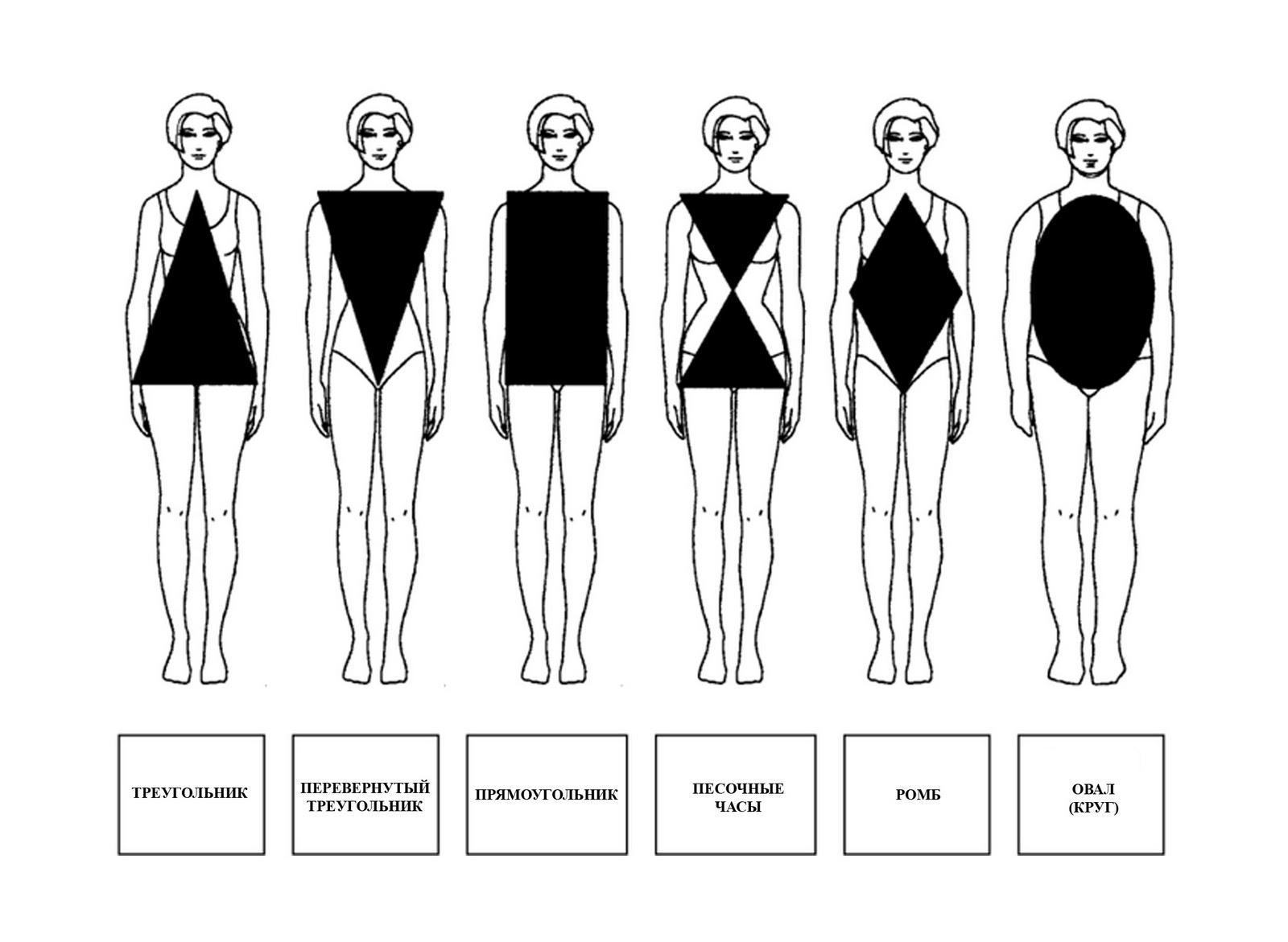 Типы женской груди фотографии 13 фотография