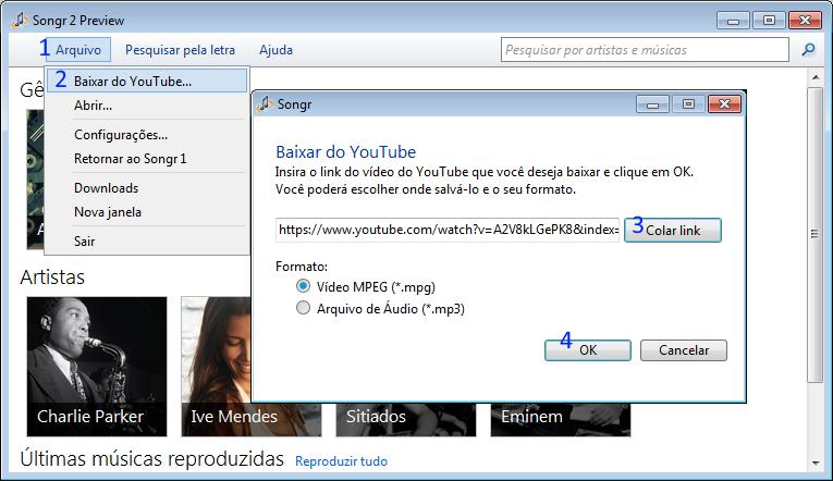 baixar video ou musica do YouTube com o SongR