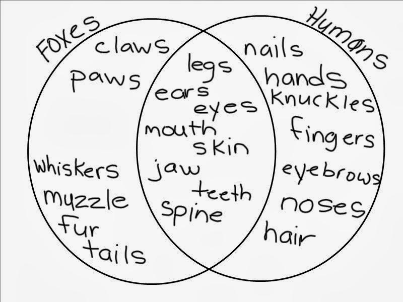 venn diagram of human disease genes orthologs and the