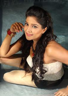 Sakshi Agarwal New Picture Shoot Images (5).jpg